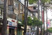 Đốn hạ, di dời 28 cây xanh ở đường Lê Lợi