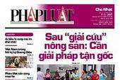 Epaper số 116 ngày 7/5/2017