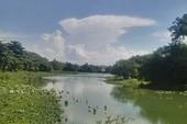 Vì đâu hồ Tịnh Tâm mất mùa hoa sen?