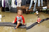 Cậu bé 3 tuổi cưỡi trăn gây sốt báo nước ngoài