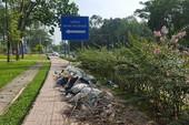Rác ven Công viên Gia Định: Nhiều năm vẫn thế