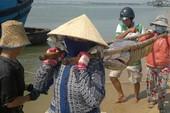 'Lộc biển' đầu năm và khát vọng vươn khơi