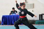 Khai mạc giải vô địch võ cổ truyền TP.HCM