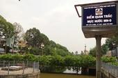 Quan trắc tự động, ngăn cá chết trên kênh Nhiêu Lộc