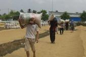Xóa đặc quyền, đặc lợi bán gạo của VFA!
