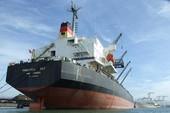 Chìm đắm trong nợ nần, tàu biển bán giá sắt vụn