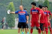 Bóng đá Việt Nam có phải số một Đông Nam Á?