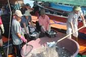 Hỗ trợ thiệt hại hải sản tồn kho 4  tỉnh miền Trung