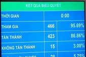 QH thông qua Luật An ninh mạng với hơn 86% đại biểu tán thành