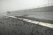 VEC thông tin mưa lớn làm cao tốc 34.000 tỉ hư hỏng