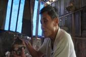 Bộ sưu tập gốm đồ sộ của lão nông làng Phước Tích