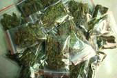 Nam sinh lớp 10 mang ma túy đi bán lẻ
