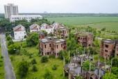 Đồng Nai: Hàng trăm biệt thự, nhà phố hoang tàn