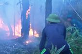 Cụ ông 70 tuổi tử vong khi cùng vợ chữa cháy rừng