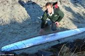Phát hiện loài cá biển lạ dài 3 mét