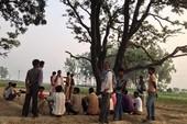 Ấn Độ: Hé lộ nguyên nhân 2 cô gái bị treo xác trên cây