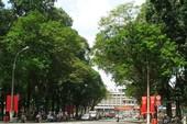 Cấm lưu thông trên đường Lê Duẩn để tổ chức giải đua xe đạp