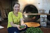 Kiếm bộn tiền từ loại trà đắt đỏ: 4 triệu đồng/kg