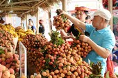 Thị trường Mỹ 'gật đầu' với vải thiều đặc sản của Việt Nam