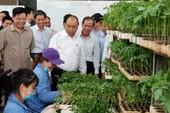 Nông nghiệp manh mún, phụ thuộc nhiều vào thời tiết