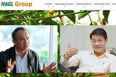 3 người của Thaco được đề cử làm sếp công ty bầu Đức là ai?