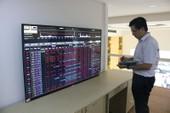 Chứng khoán Việt lại rực lửa, nhà đầu tư méo mặt
