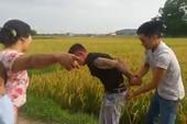 Giang hồ tấn công nông dân ở thôn Đồng Tâm, đòi bảo kê gặt lúa