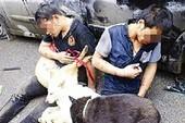 Khống chế 2 kẻ trộm chó, 3 công an bị phơi nhiễm HIV