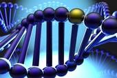Vingroup chi 4,5 triệu USD nghiên cứu giải mã gen người Việt