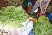Quá ít mẫu rau, củ ở chợ Thủ Đức được kiểm định