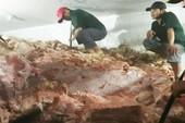 Hơn 30 tấn thịt heo không nguồn gốc suýt ra thị trường