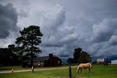 Mỹ lo ngại nguy hiểm bất thường của bão Florence