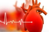Gần 2 triệu người Việt Nam đang mắc bệnh suy tim