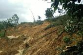Quảng Nam: Tìm thấy 5 thi thể bị đất vùi lấp