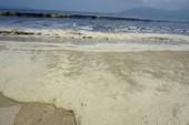 Nước biển đen ngòm kèm mùi hôi tại biển Đà Nẵng