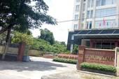 Quảng Nam: 1 người có thu nhập 700.000 USD từ Google