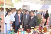 Thủ tướng chủ trì Hội nghị xúc tiến đầu tư Vĩnh Long