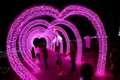 Giới trẻ đổ xô check in khu vườn đèn LED rực rỡ nhất SG