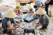 Đòi tiền lời bán cá mà không tính tiền lỗ được không?