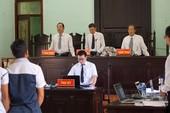 Vụ cưa cây gỗ khô: Các thẩm phán đã hết bệnh