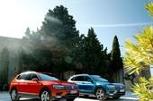 Tháng 1-2018: Volkswagen bán xấp xỉ 900.000 xe