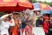 Dr Thanh-Lung Sen Dưới: Cây cầu mơ ước ở cù lao Giêng