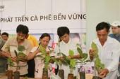 19.000 nông dân tham gia sản xuất cà phê 'sạch'
