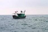 Tìm kiếm 2 ngư dân ngã xuống biển mất tích