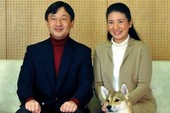 Công nương Nhật xin lỗi vì bệnh tình