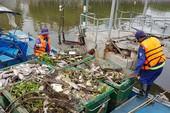 Cá chết cùng rác thải nổi trắng kênh Nhiêu Lộc - Thị Nghè