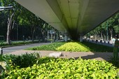 Người đàn ông tử vong cạnh Công viên Gia Định