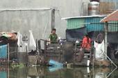 Vợ về quê, chồng tử vong bất thường trong phòng trọ ở Bình Tân