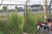 Hàng rào cao tốc bị cắt phá, tai nạn rình rập