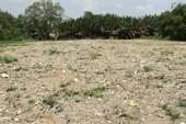 Lee&Man chấm dứt hợp đồng đơn vị chôn chất thải trái phép
